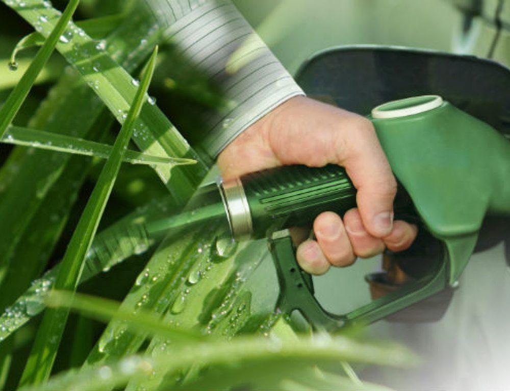 Il Biometano: la fonte energetica sostenibile