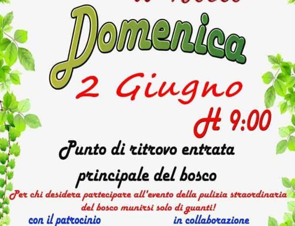 A Manziana l'iniziativa Salvaguardiamo il Bosco